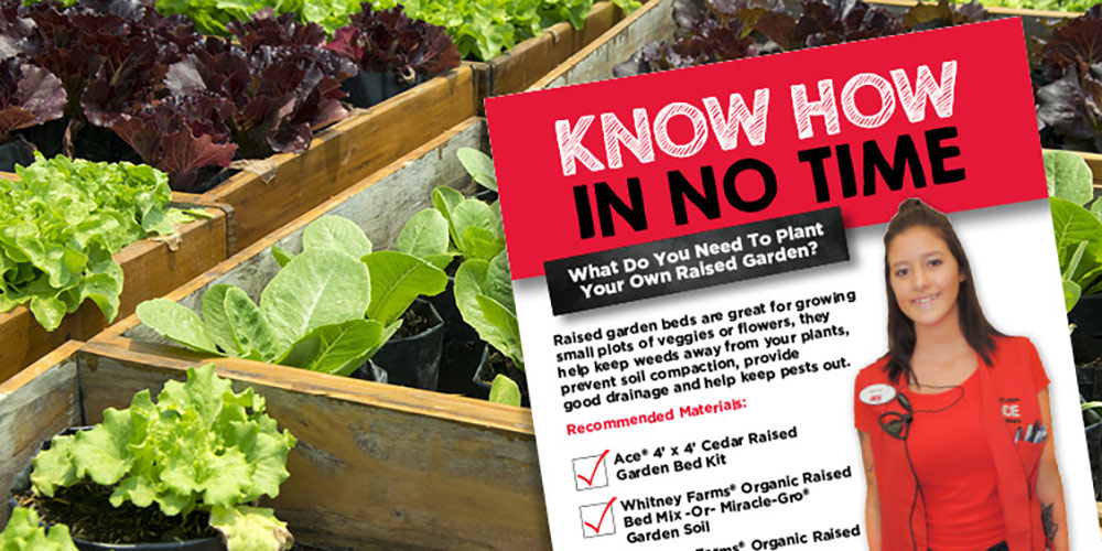 Planting Your Own Raised Garden - Great Lakes Ace Hardware Store
