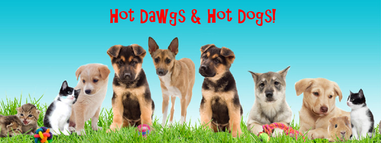 Hot Dawgs & Hot Dogs - Pet Adoption Event - Great Lakes Ace Hardware Store