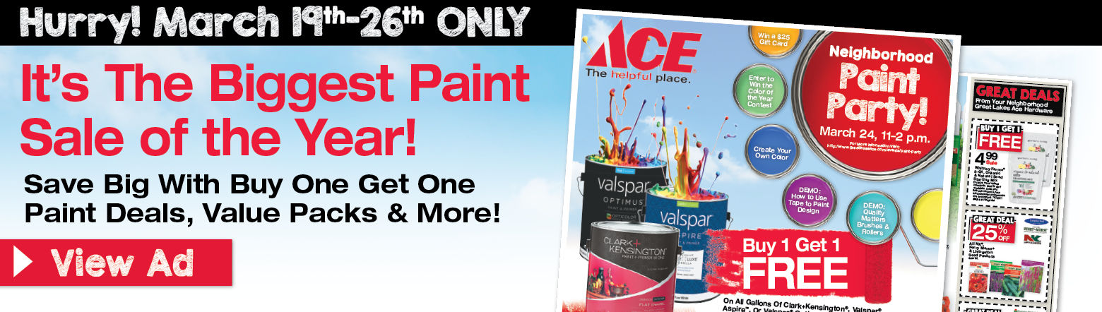 3/19 Paint Party Ad