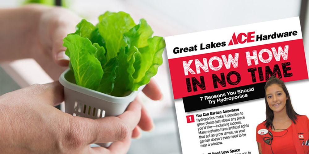 Benefits of Hydroponics - Great Lakes Ace Hardware Store