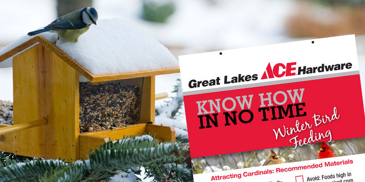 Winter Bird Feeding - Great Lakes Ace Hardware Store