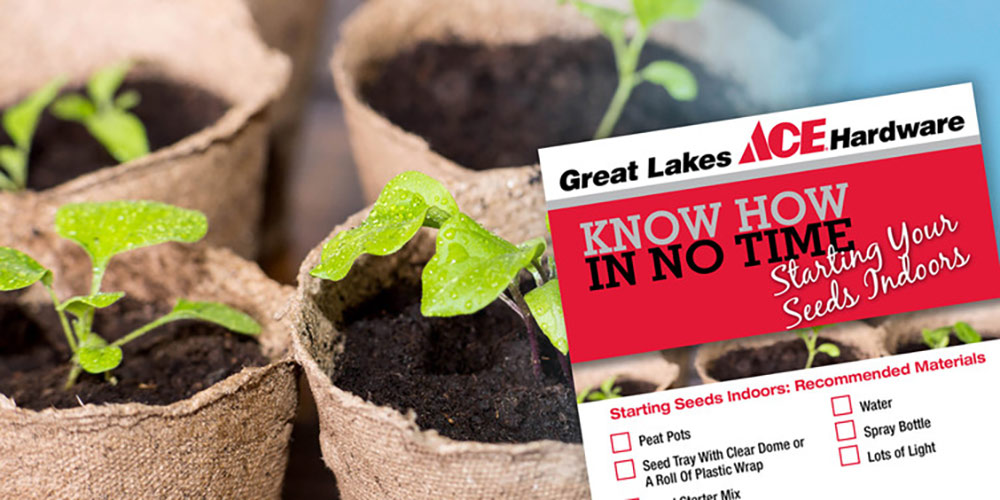 Starting Your Seeds Indoors - Great Lakes Ace Hardware Store